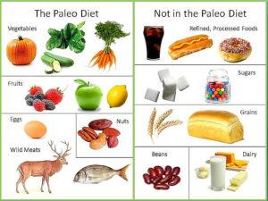 Paleo stravování jako zaručený úspěch
